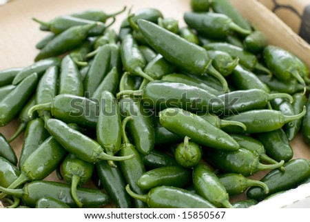 Spicy green jalapenos waiting to be chopped. - stock photo