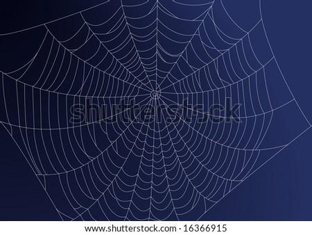 Spideweb illustration - stock photo