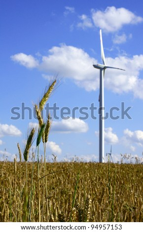 spike and turbines in wind farm, Poland