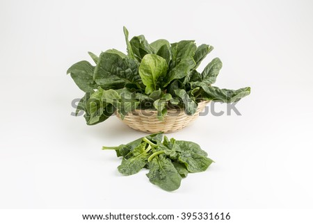 Spinach - stock photo