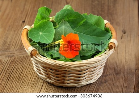 Spinach and garden cress in a basket - stock photo