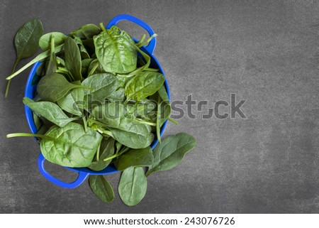 Spinach colander, over dark slate. - stock photo