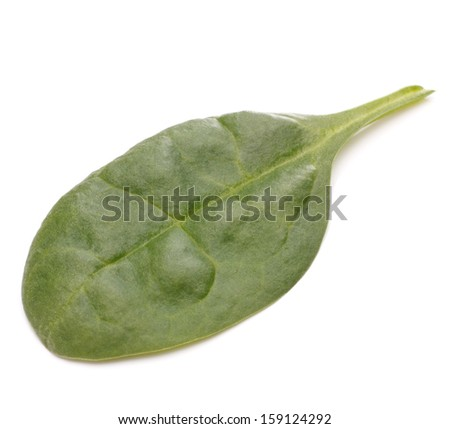Spinach vegetables  isolated on white background cutout