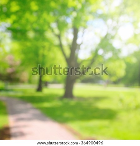 Sping park with green trees in sunlight, blurred background - stock photo