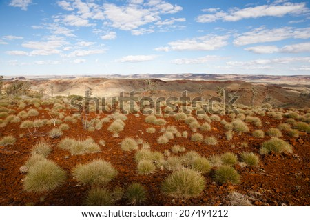 Spinifex Plants - Outback Australia - stock photo