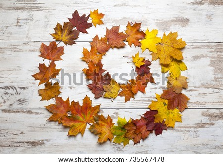 Spiral Of Leaves Fall Rustic Background