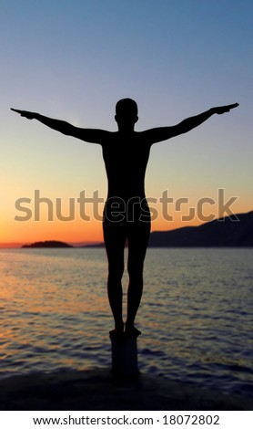 Spiritual silhouette - sea sunset - stock photo