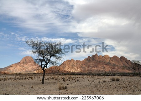 Spitzkoppe, National Landmark in Namibia, Southern Africa, with boulders in the Namib Desert and an Acacia Thorn Tree.