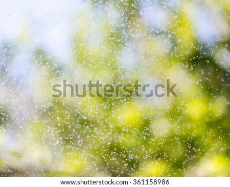 splashing water on nature. background - stock photo