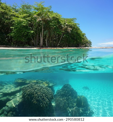 Split image of tropical shore above and below sea surface with lush vegetation and a coral reef underwater, Caribbean sea, Costa Rica - stock photo
