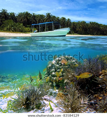 Split view of tropical beach with a boat anchored and underwater corals with tropical fish, Caribbean sea, Bocas del Toro,  Zapatillas islands, Panama