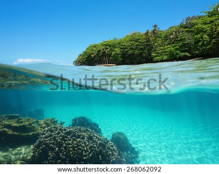 Split view over and under sea surface with lush tropical shore above waterline and corals with sand underwater, Caribbean, Puerto Viejo, Costa Rica - stock photo