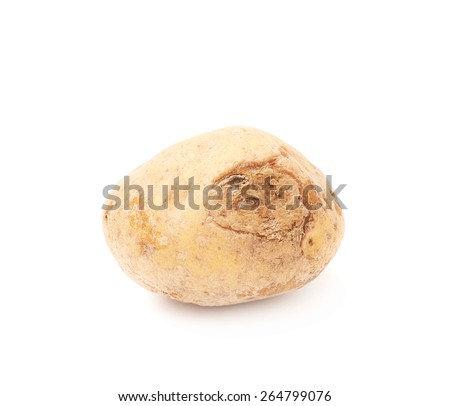 Spoiled and rotten brown potato isolated over the white background - stock photo