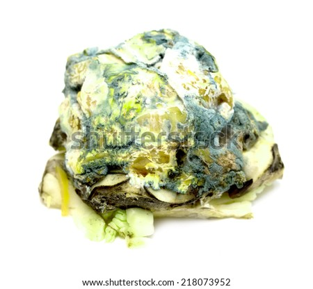 spoiled rotten cabbage with mold - stock photo