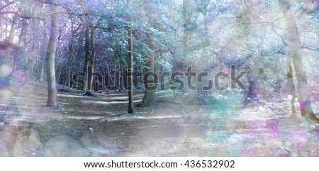 Spooky Blue Fantasy Forest  - Wide woodland scene with a soft focus bokeh vignette and an off center focal point of the path with ethereal blue purple and green coloring