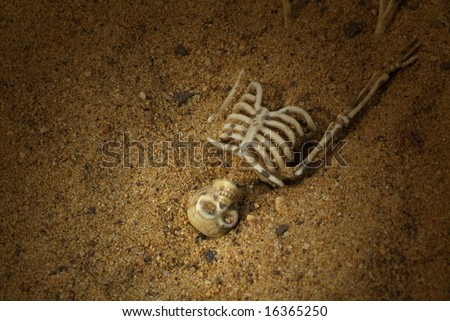 Spooky Buried Skeleton bones - stock photo