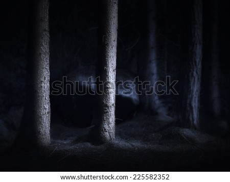 Spooky dark forest with bare tree trunks in blue light - stock photo