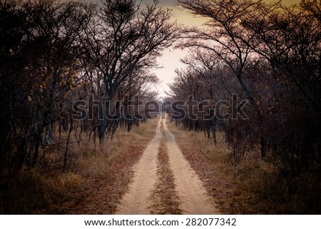 dirt road stock photos images amp pictures shutterstock
