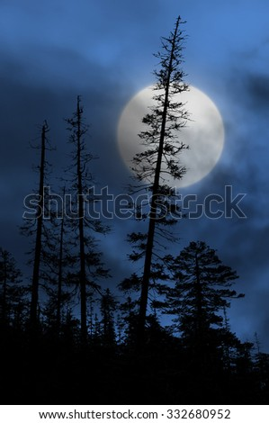 spooky forest with silhouettes of trees, dark blue sky and big full moon - stock photo