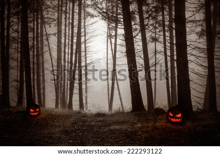 Spooky Night Forest with fog and with pumpkin lanterns - stock photo