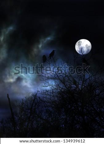 Spooky night with black birds. - stock photo