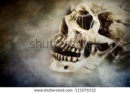 Spooky skull with spider webs. Room for copy space. - stock photo