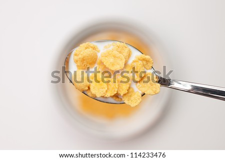 spoon full of cornflakes close-up breakfast concept - stock photo