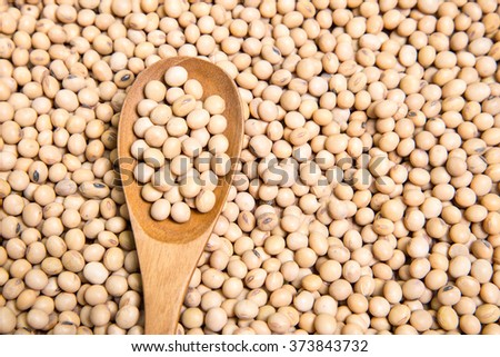 Spoon on soybeans background