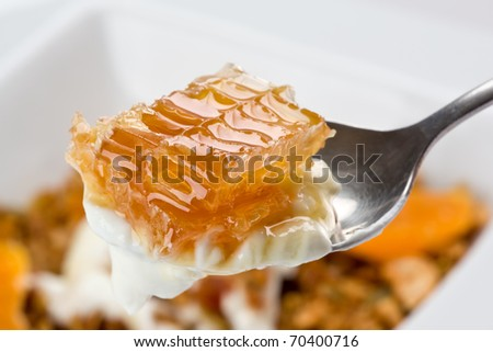 Spoonful of greek style yogurt with honeycomb.