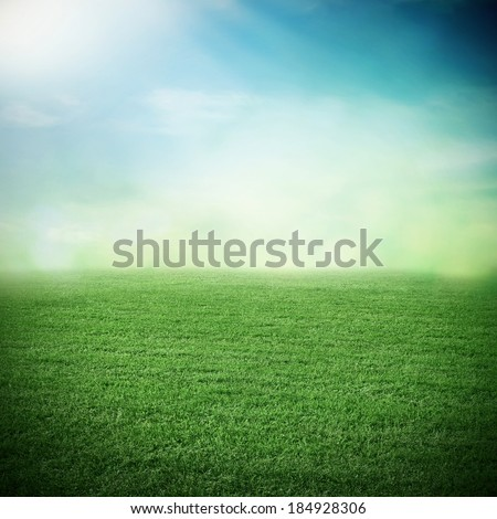 Sport grass field in summer or spring - stock photo