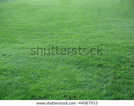 Sports field with well maintained grass perfect for soccer world cup. - stock photo