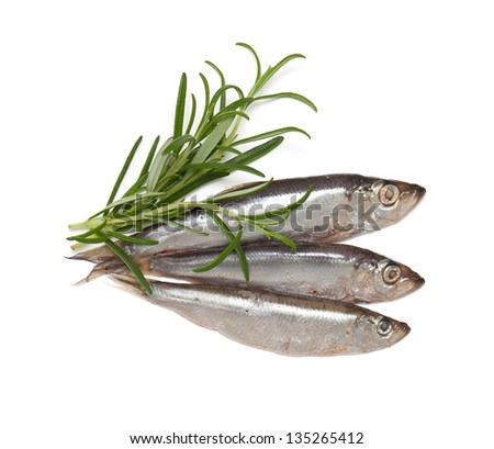 sprat fish and rosemary isolated on white background
