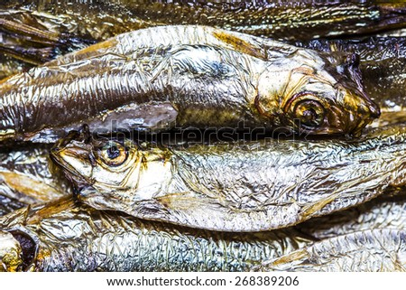 sprats in yin yang formation