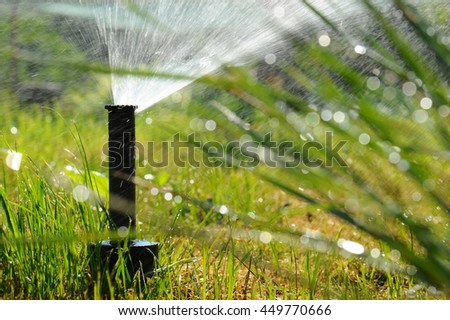 Spray the lawn and lush grass in drops of dew. - stock photo