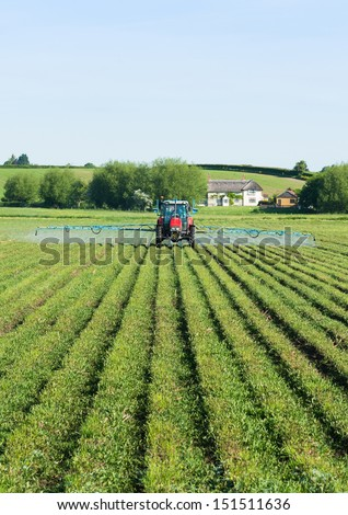 Spraying willow crops on the Somerset levels - stock photo