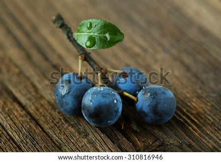 Sprig of the blackthorn on the wooden table - stock photo