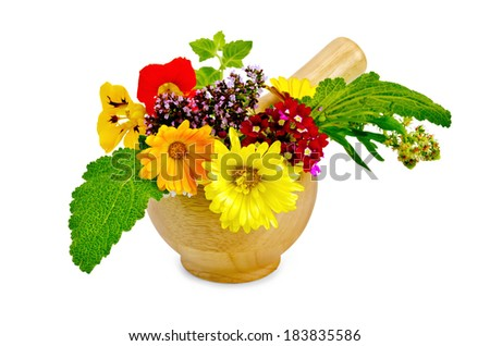 Sprigs of mint, flowers of oregano, calendula, nasturtium, mignonette, verbena, sage in a wooden mortar isolated on white background - stock photo