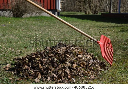 Spring activity with a red rake and a heap of dry leaves in the backyard