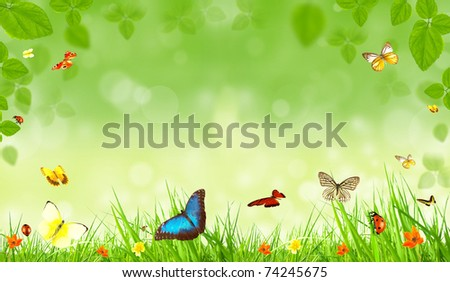 Spring background with butterflies - stock photo