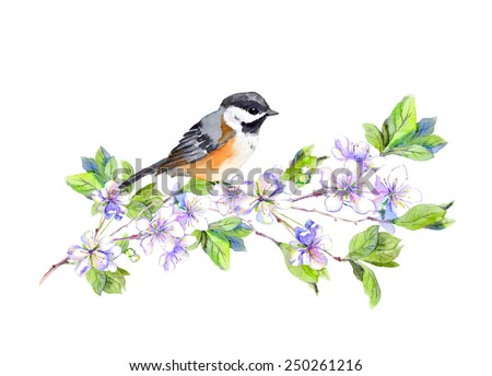 Spring bird on blossom apple or cherry (sakura) branch. Watercolor  - stock photo