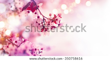 Spring blossom border or background art with pink blooming tree. Beautiful nature scene with flowers on tree and sun flare. Sunny day. Beautiful Orchard. Abstract blurred background. Springtime - stock photo