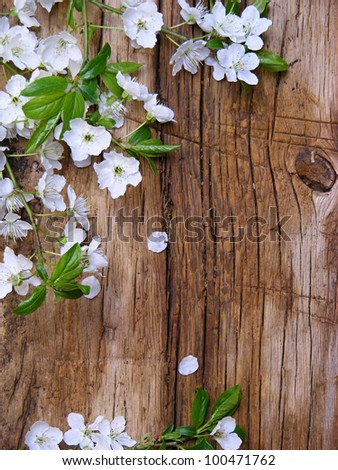 Spring blossom branch on a wooden table - stock photo