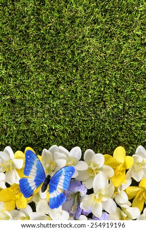 Spring border : grass, butterfly, flowers.   - stock photo