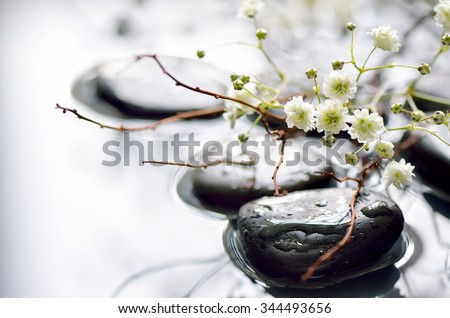 Spring branch under stones in water, spa spring concept - stock photo