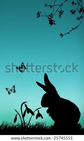 spring bunny snowdrops - stock photo