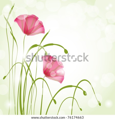 Spring card with poppies. Jpeg version - stock photo