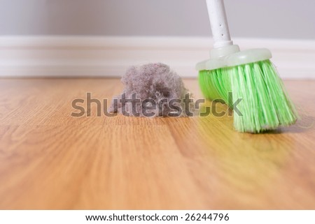 Spring Cleaning sweeping large dust bunny on a hardwood floor - stock photo