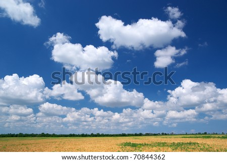 Spring cloudscape.Composition of nature composition. - stock photo