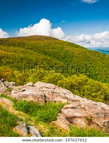 Spring colors on a mountain in Shenandoah National Park, Virginia. - stock photo