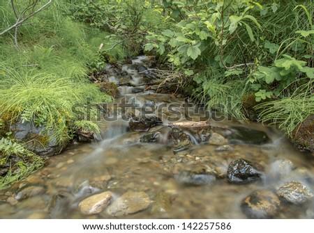Spring Creek - stock photo